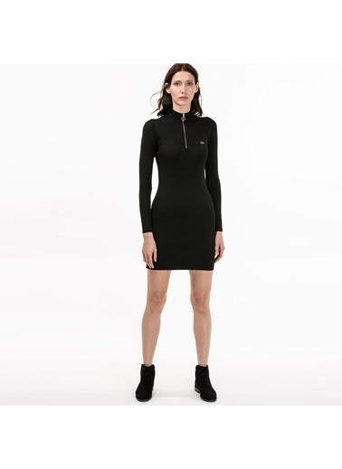 Fermuar Detaylı Kalem Elbise-Lacoste